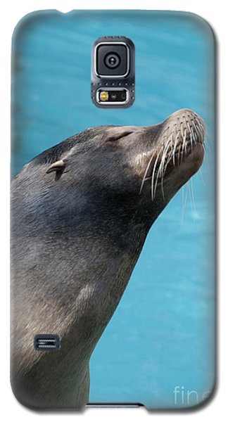 Kiss Me Galaxy S5 Case