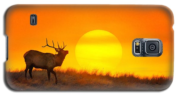 Galaxy S5 Case featuring the photograph Kiss The Sun by Kadek Susanto