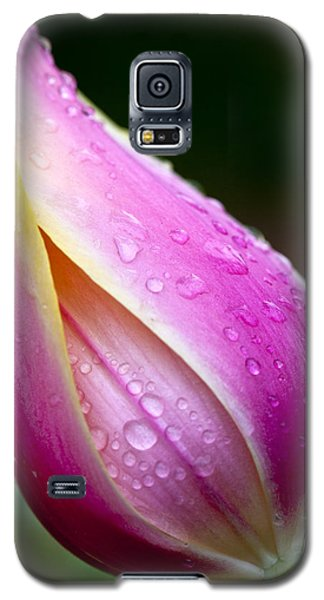 Galaxy S5 Case featuring the photograph Kissed By The Rain by Robert Camp
