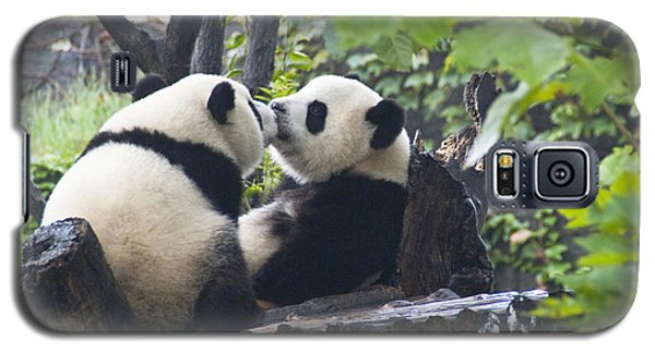 Galaxy S5 Case featuring the photograph Kissing Pandas by Jialin Nie Cox ChinaStock