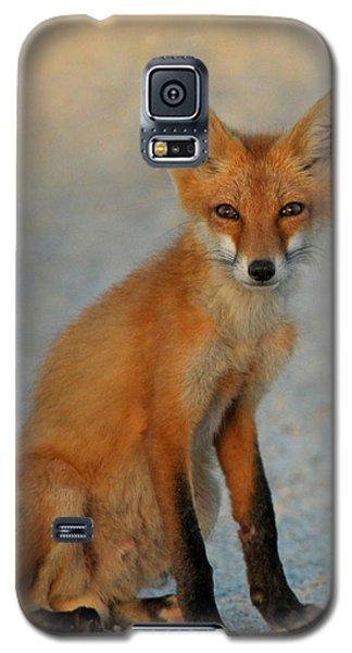 Kit Galaxy S5 Case