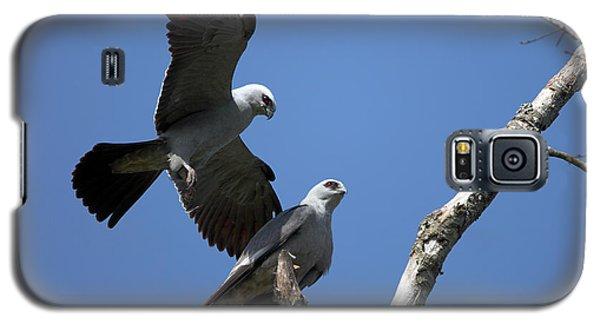 Kites In Love Galaxy S5 Case