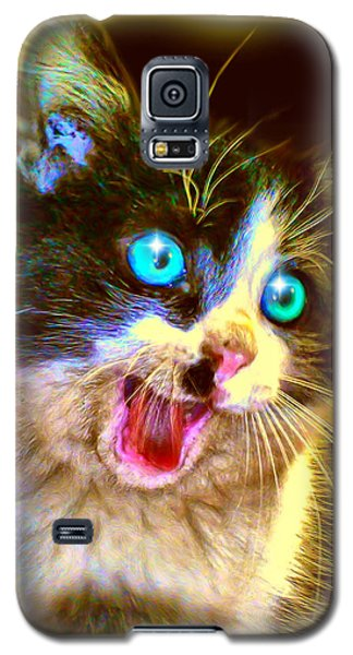 Galaxy S5 Case featuring the painting Kitten by Daniel Janda