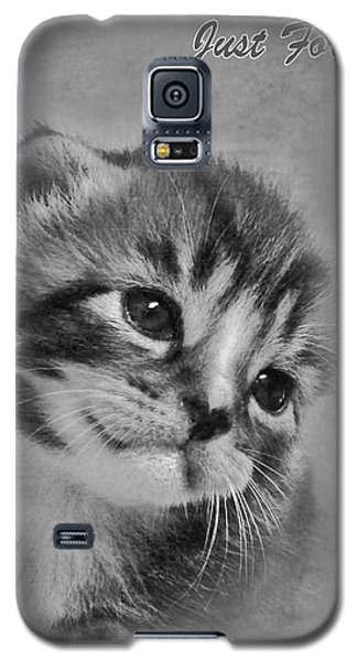 Kitten Just For You Galaxy S5 Case by Terri Waters