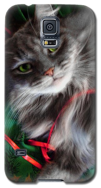 Kitty Christmas Card Galaxy S5 Case by Louise Kumpf