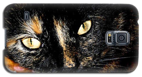 Kitty Face Galaxy S5 Case
