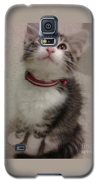 Galaxy S5 Case featuring the photograph Kitty - Forgotten Innocence by Barbara Yearty