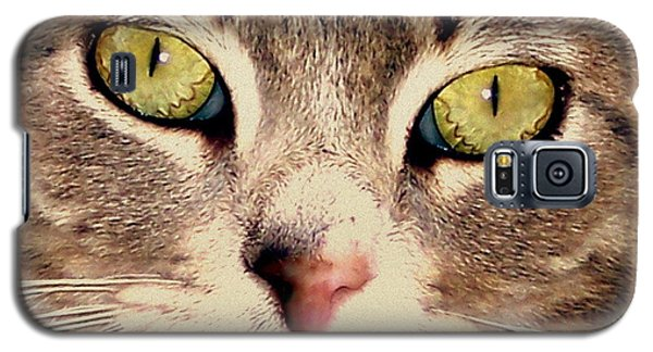 Kitty Green Eyes Galaxy S5 Case