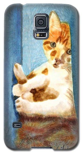 Kitty In A Corner Galaxy S5 Case by Judy Filarecki