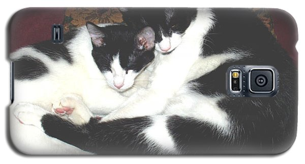 Galaxy S5 Case featuring the photograph Kitty Love by Marna Edwards Flavell
