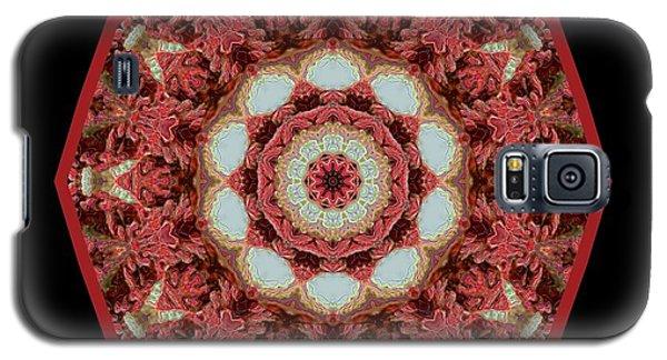 Galaxy S5 Case featuring the digital art Knotty Twists Kaleidoscope by Aliceann Carlton