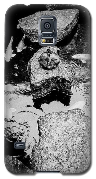 Koi Around The Old Stone Path Galaxy S5 Case by Dean Harte
