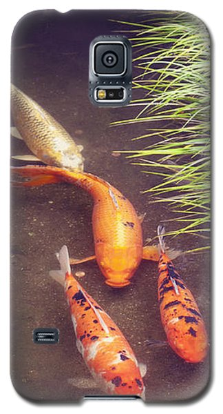 Koi Galaxy S5 Case