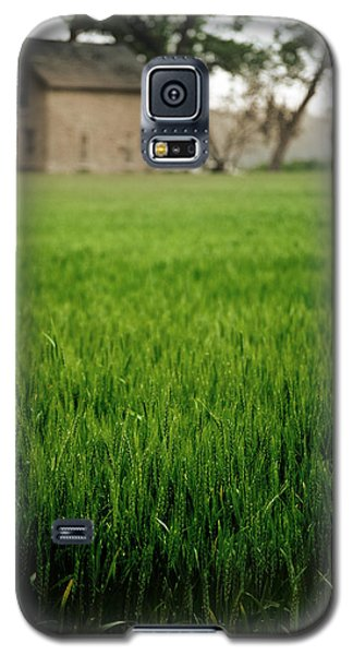 Ks Farm Galaxy S5 Case by Brian Duram