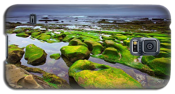 La Jolla California Galaxy S5 Case by Robert  Aycock