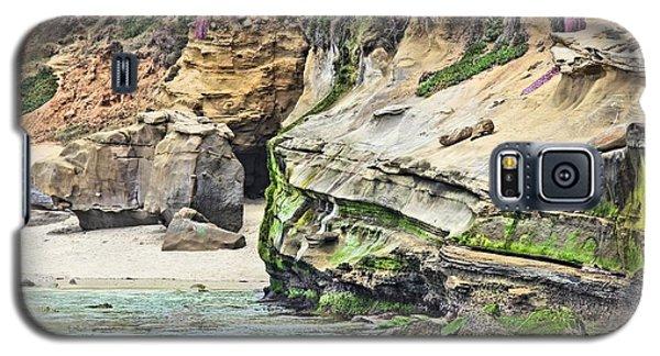 La Jolla Cliffs Galaxy S5 Case