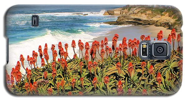 La Jolla Coast With Flowers Blooming Galaxy S5 Case