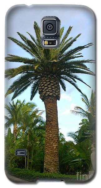 La Palmilla Galaxy S5 Case