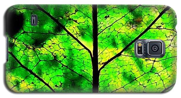 Lacey Leaf Galaxy S5 Case by Karen Molenaar Terrell