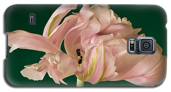 Galaxy S5 Case featuring the photograph Lacey Tulip by Patricia Schaefer