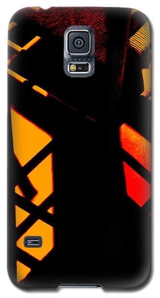Ladderback Flamenco Galaxy S5 Case by Lin Haring