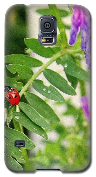 Lady Bug Among The Wild Flowers Galaxy S5 Case