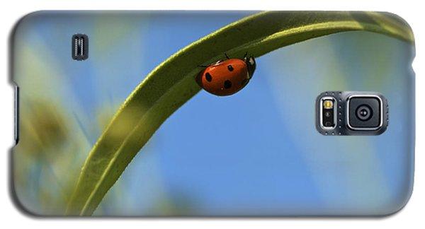Lady Bug Lady Bug Galaxy S5 Case