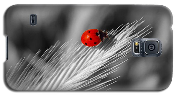Lady In Red Galaxy S5 Case by Richard Stephen