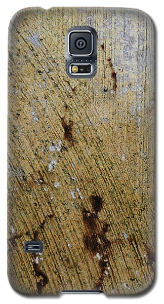Galaxy S5 Case featuring the photograph Lady Leaf by Jani Freimann