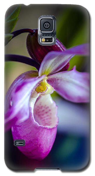 Lady Slipper In Pink Galaxy S5 Case