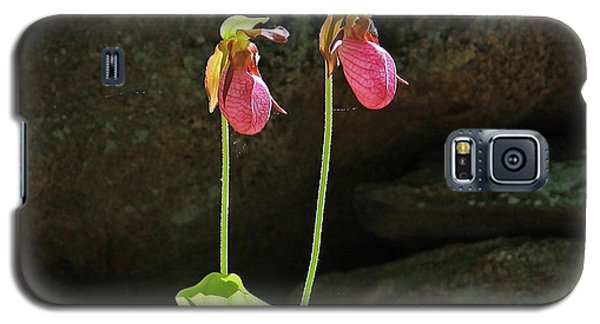 Lady Slippers At Moore State Park 5 Galaxy S5 Case