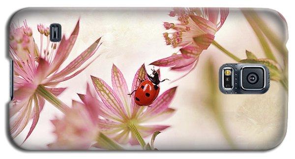Ladybug Galaxy S5 Case - Ladybird And Pink Flowers by Ellen Van Deelen