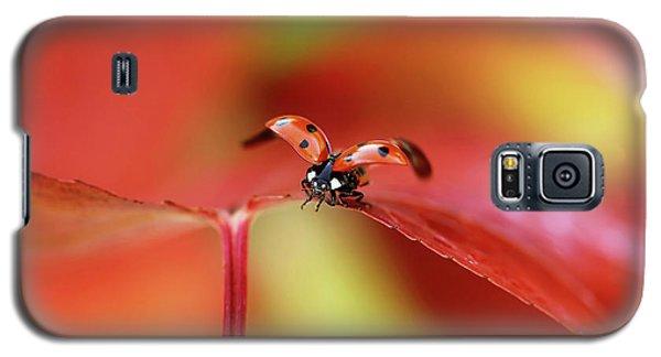 Ladybug Galaxy S5 Case - Ladybird In Autumn by Ellen Van Deelen