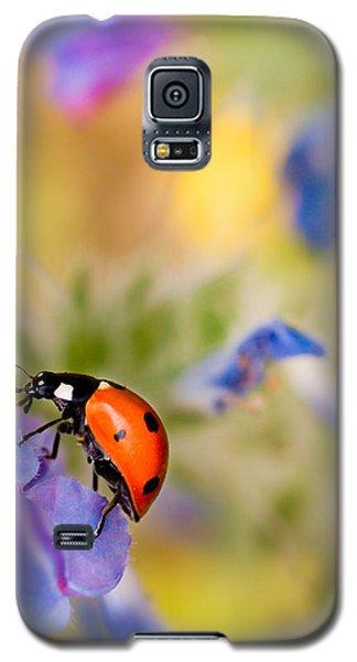 Ladybird Galaxy S5 Case by Meir Ezrachi