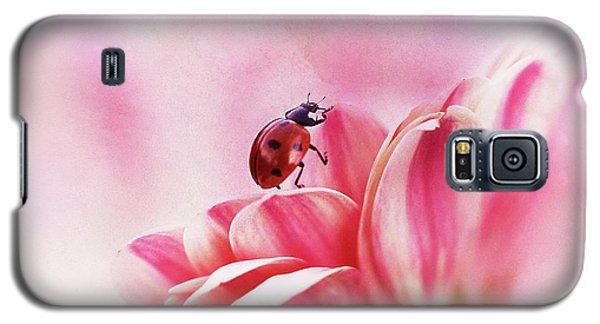 Ladybug Galaxy S5 Case - Ladybird On Gerbera by Ellen Van Deelen