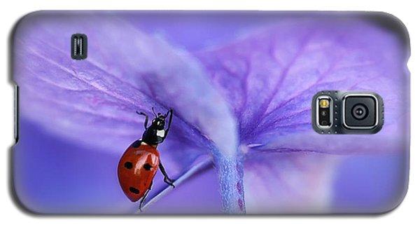 Ladybug Galaxy S5 Case - Ladybird On Purple Hydrangea by Ellen Van Deelen
