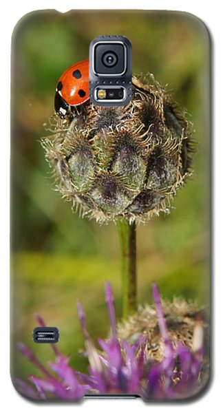 Galaxy S5 Case featuring the digital art Ladybird by Ron Harpham