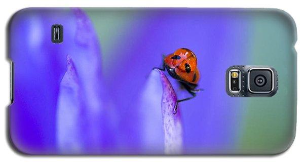 Ladybug Adventure Galaxy S5 Case