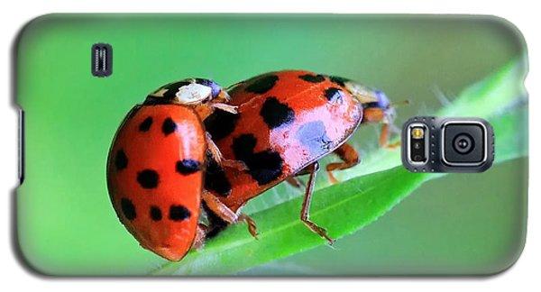 Ladybug And Gentlemanbug Galaxy S5 Case