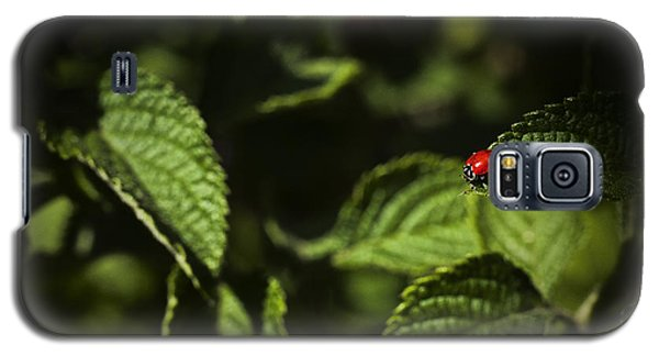 Galaxy S5 Case featuring the photograph Ladybug by Bradley R Youngberg