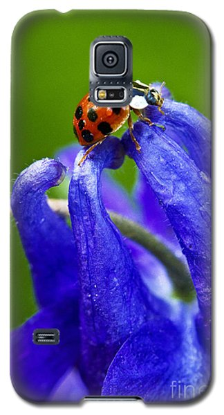 Ladybug Galaxy S5 Case by Carrie Cranwill