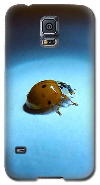 Ladybug Under Blue Light Galaxy S5 Case by Marc Philippe Joly