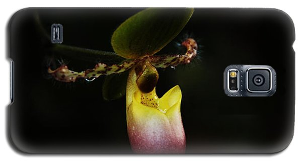 Ladys Slipper Orchid Galaxy S5 Case by Greg Allore