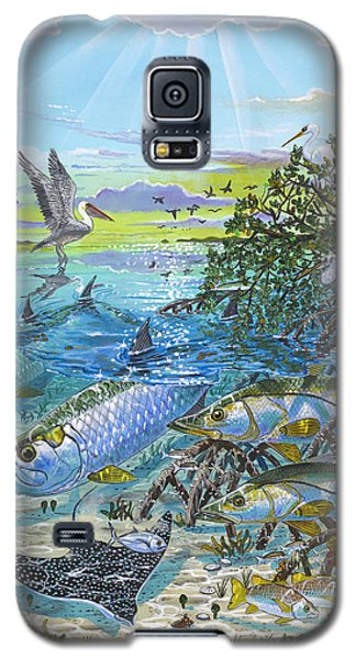 Lagoon Galaxy S5 Case