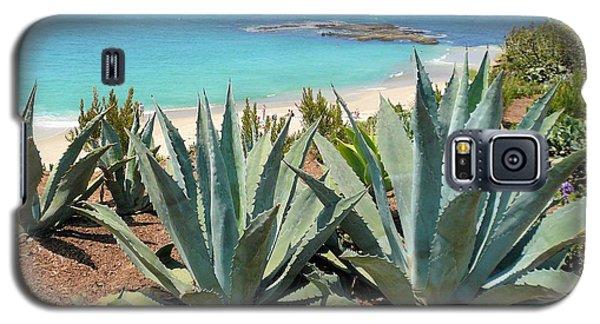 Laguna Coast With Cactus Galaxy S5 Case
