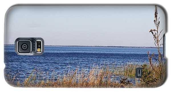 Galaxy S5 Case featuring the photograph Lake Apopka 2 by Chris Thomas