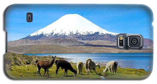 Lake Chungara Chilean Andes Galaxy S5 Case