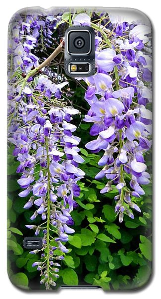 Lake Country Wisteria Galaxy S5 Case