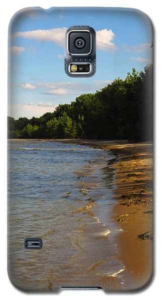 Lake Erie Shore 3 Galaxy S5 Case by Shawna Rowe