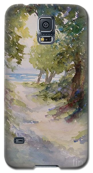 Lake Michigan Beach Path Galaxy S5 Case